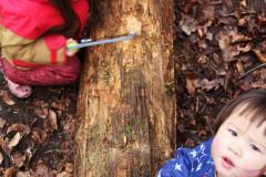 Kinder-mit-Werkzeug